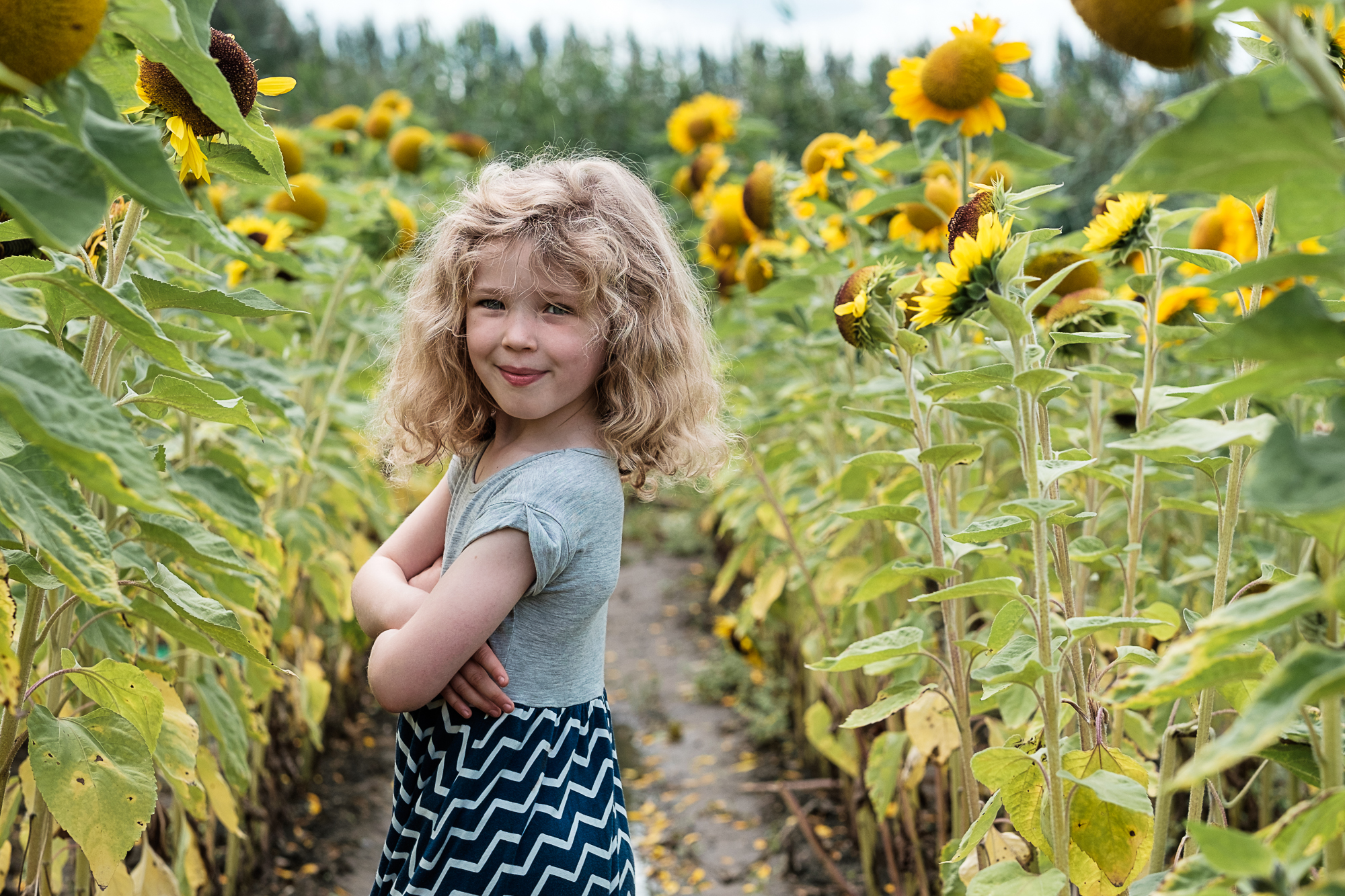 Sunflower girl Garsons Farm Surrey